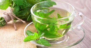صورة عشب رائع له عدة فوائد تعرف عليها, فوائد شرب النعناع