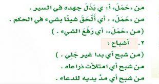 صورة بعض معاني اللغة العربية المهمة تعرف عليها, معنى كلمة حاملات