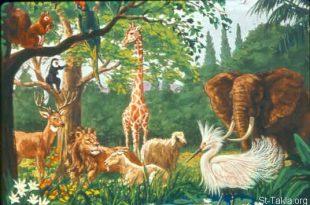 صورة كل الحيوانات والطيور جميلة بجد, صور كائنات حية