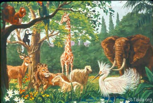 كل الحيوانات والطيور جميلة بجد صور كائنات حية بنات كول