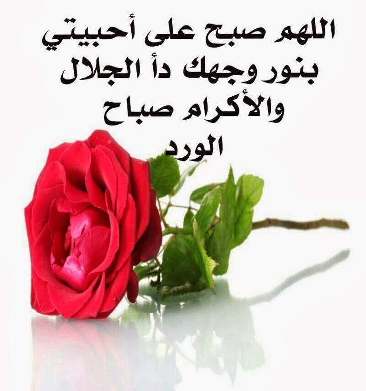 صورة احلى رسالة الى حبيبي دائما, اسعد الله صباحك حبيبي