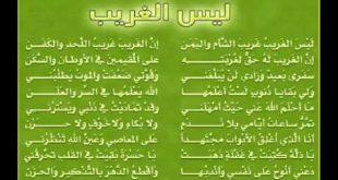 اناشيد اسلامية جديدة،كلمات دينيه جميله تطرب الاذن