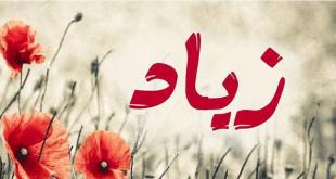 معنى اسم زياد،اصول اسم زياد وصفات حامله
