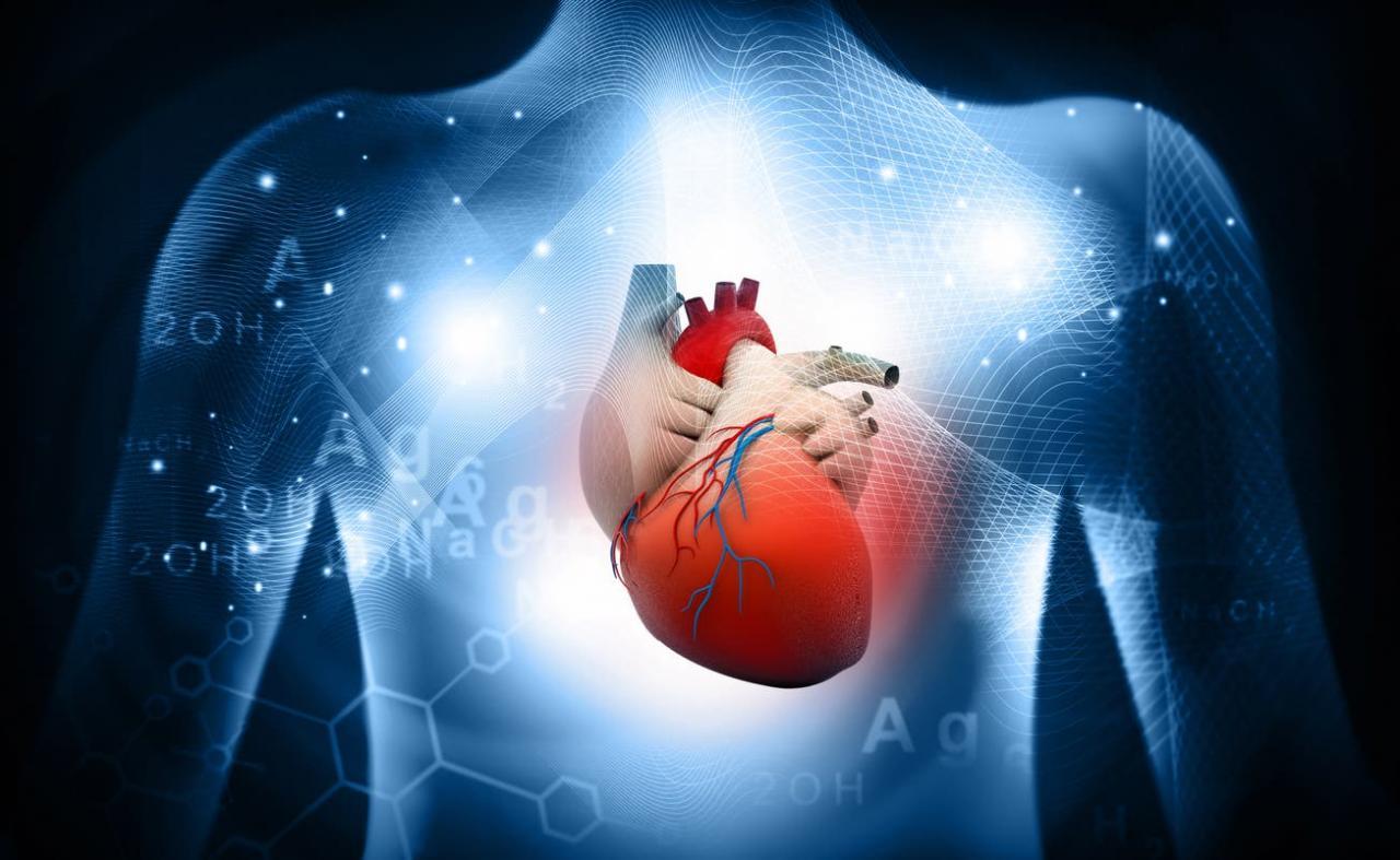 صورة العلاج هو الانتظام فى الادوية , علاج امراض القلب 12201 2