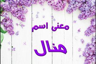 صورة صور اسم منال؛ صفات حامله اسم منال 3457 2 310x205